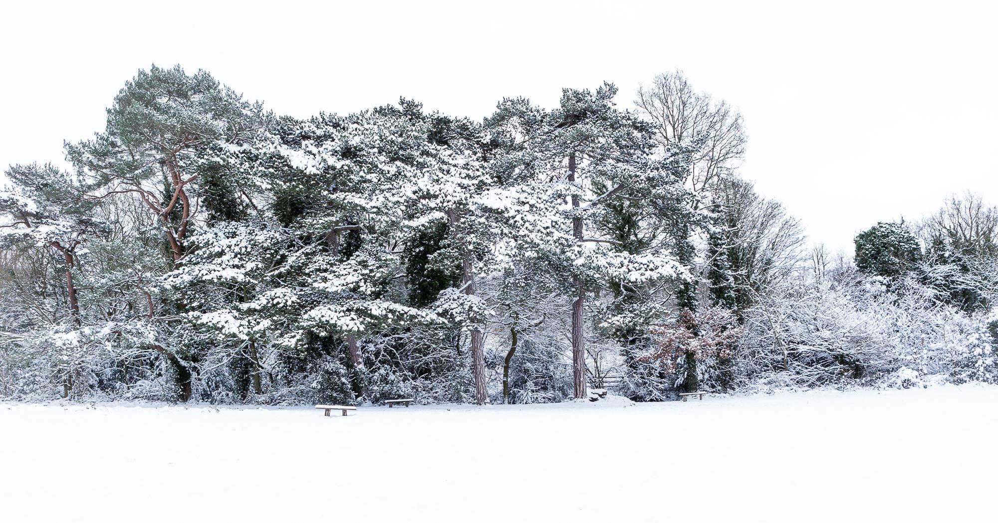 Recherché, Holywells Park